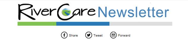 latest news thumbnail